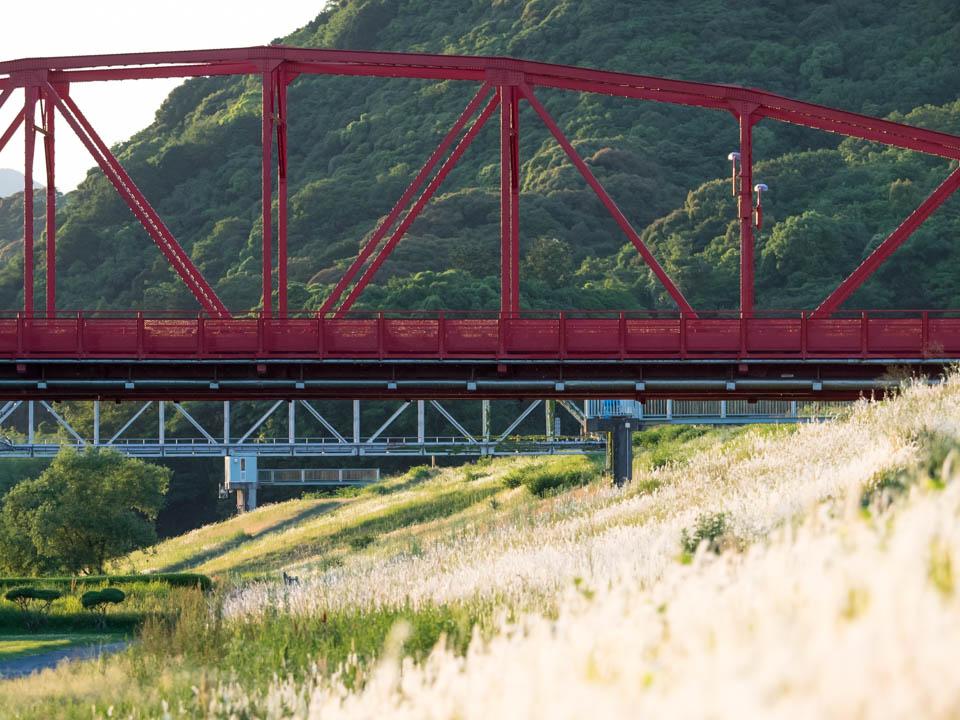 チガヤと赤鉄橋