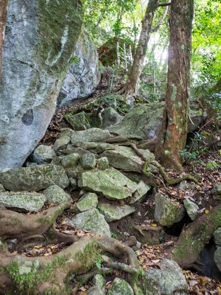 西土佐の金刀比羅山(奥の院への道)