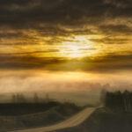 春の農地を包む朝霧